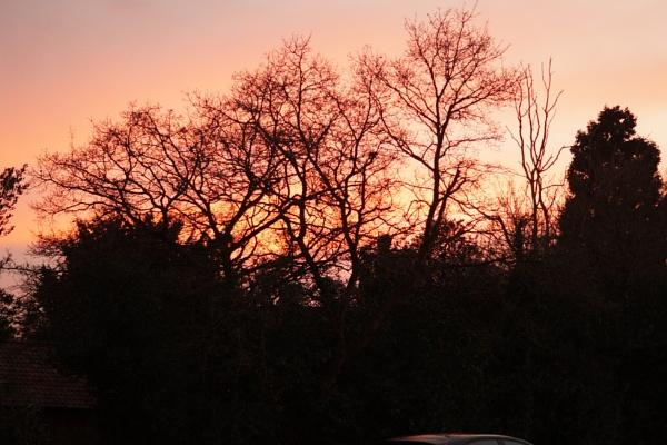 Essex Sunset