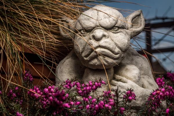 Mr. Grumpy by fossie1955