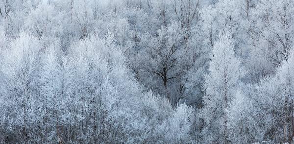 Rime Frost Glen Etive by rontear