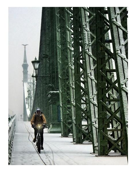 Cyclist in Budapest .. by woodlark