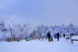 Walking in a Winter Wonderland