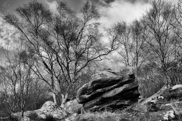 Brimham Rocks 3 by BiffoClick