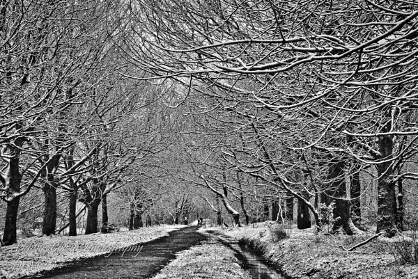 Rivington Park... by Sambomma