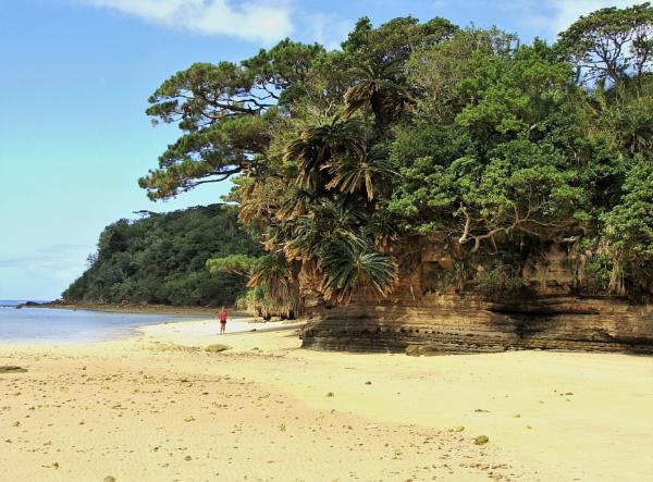 JAPAN - Coastal Landscapes No.3 by PentaxBro