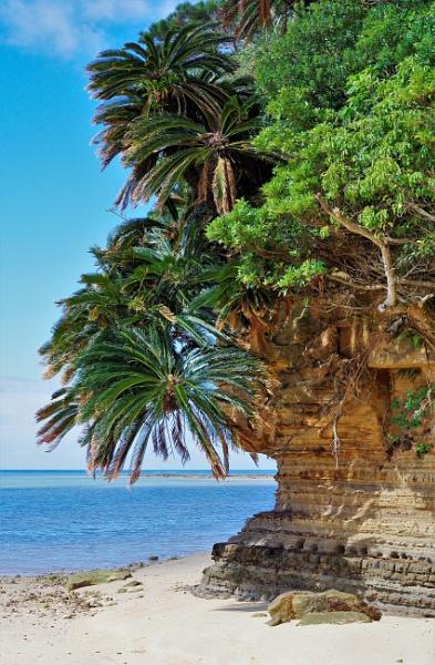 JAPAN - Coastal Landscapes No.4 by PentaxBro