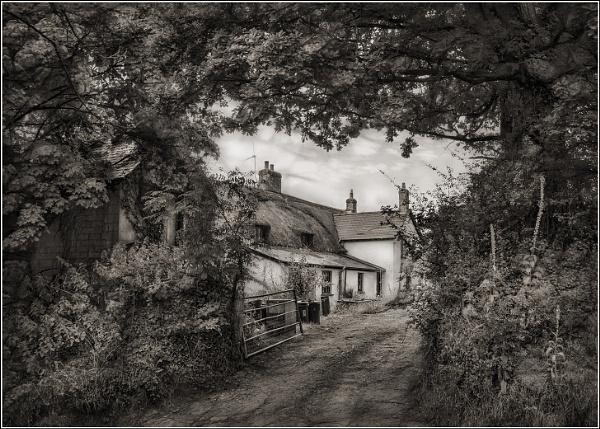 Farmhouse Hideaway by BlueRoom
