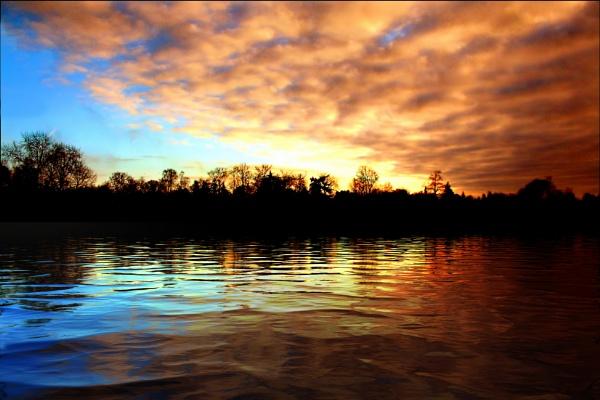 Warnham Pond by sandwedge