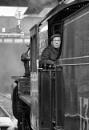 Steam Driver by stevie