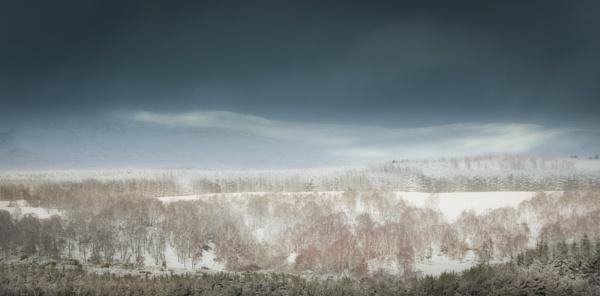 Winter Wonderland by Mike43