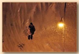 *** Snow flex ***