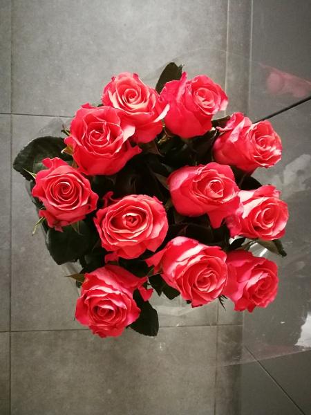 My Valentine\'s day by Sony2