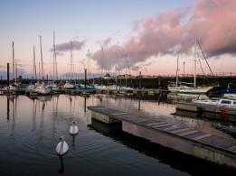 Maryport Marina sunset