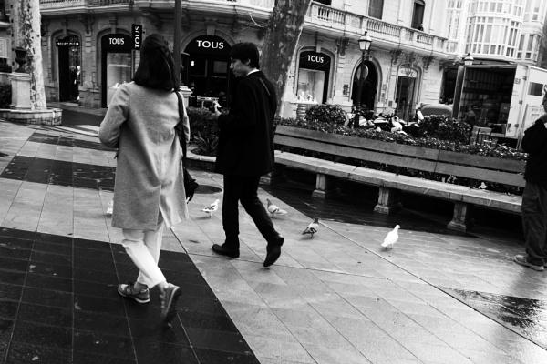 Palma Street Photography  by NikitaMorris