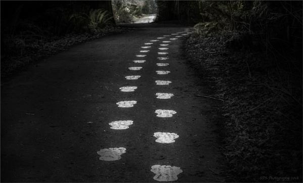 Big Foots Hideaway by Daisymaye