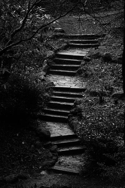 Zig Zag steps by notsuigeneris