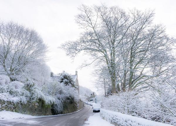 Fresh Snowfall by DalesLass
