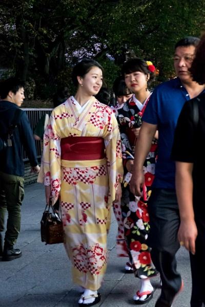 The Japanese Kimono by manicam