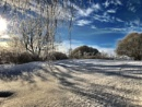 February afternoon, -25 C by Jou©o