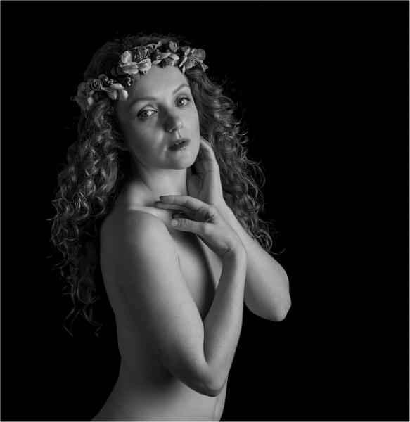 Holly Monochrome