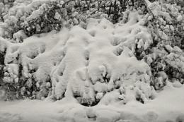winter lingers #3
