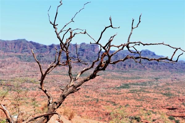 Desert landscape by DiegoCueto75