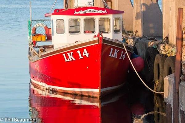 Reflective fishing boat
