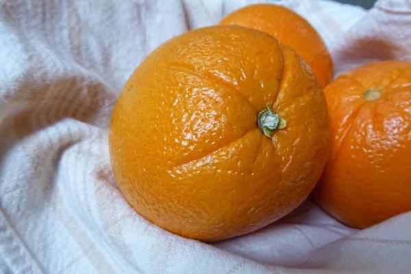 Orange by Joline
