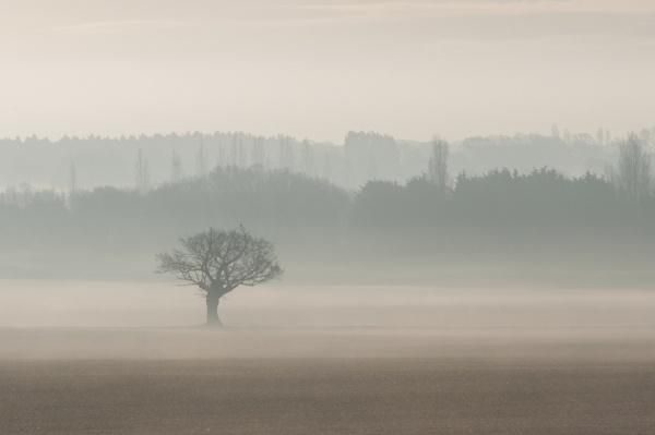 Haze 1 by John21