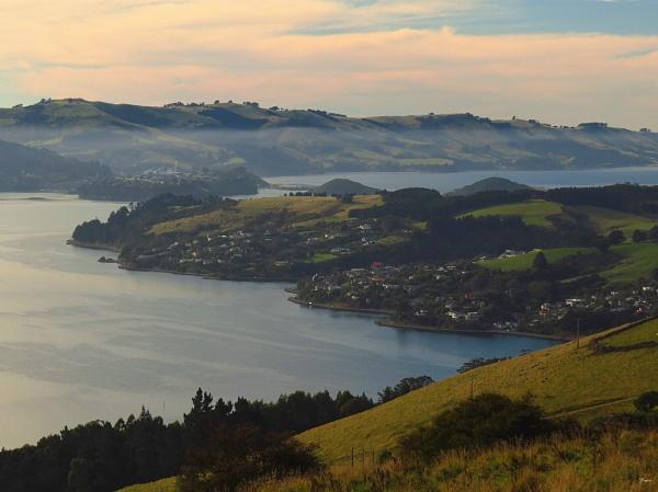 Otago Harbour 12