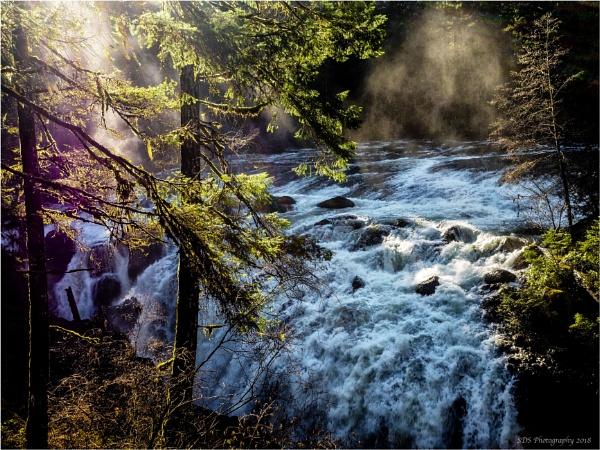 Englishman River Falls Sun Rays by Daisymaye