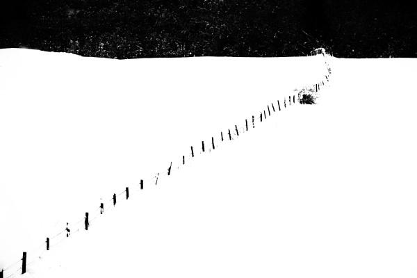 Winter by saltireblue