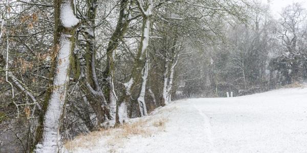 A Winter Walk by DalesLass