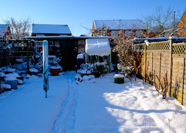 The Snow Garden by Nikonuser1