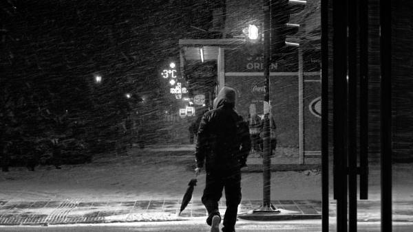 Winter Scene XXXII by MileJanjic