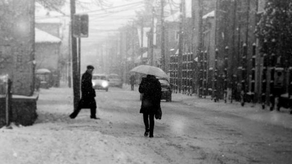 Winter Scene XXXIII by MileJanjic