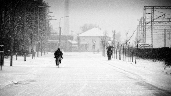 Winter Scene XXXVII by MileJanjic