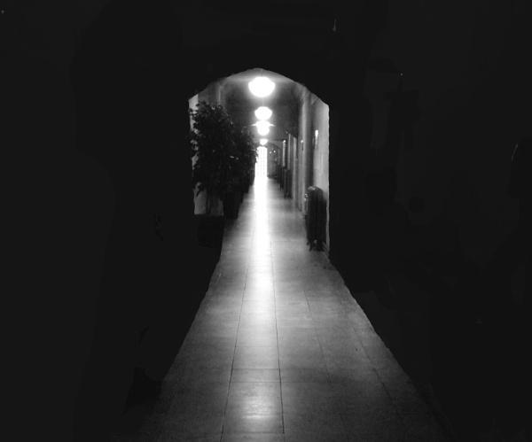 the long dark walk by mrtower