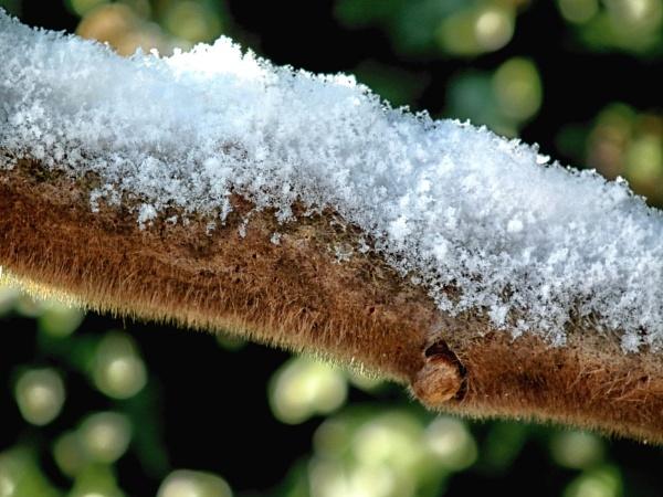 Snow balance by KrazyKA