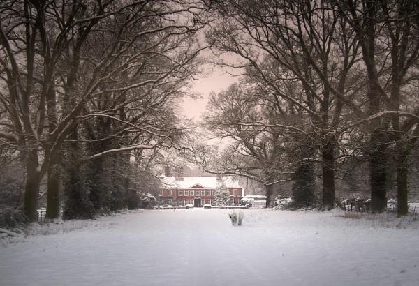 Polar Conditions by jpappleton
