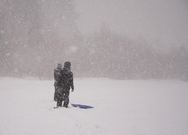 Blizzard by Harpa