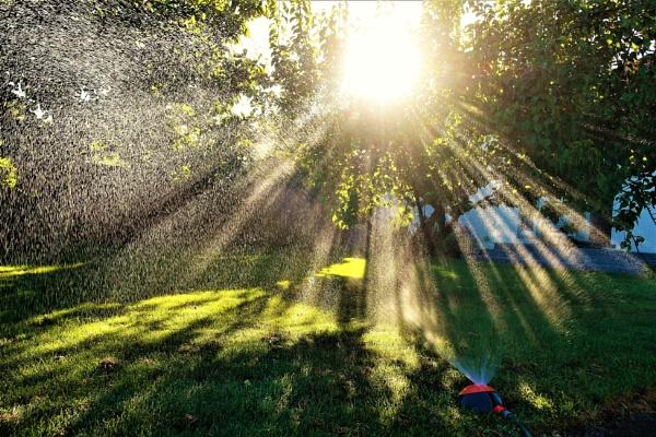 Water  Light
