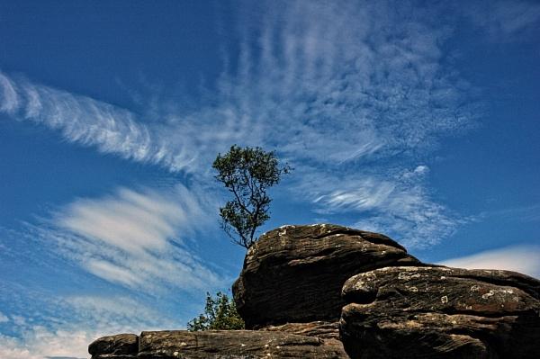 Brimham Rocks by dven