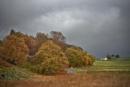 Autumn in Glen Clova by MalcolmM