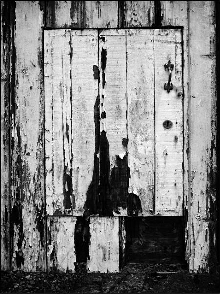 Door in a Gate by woolybill1