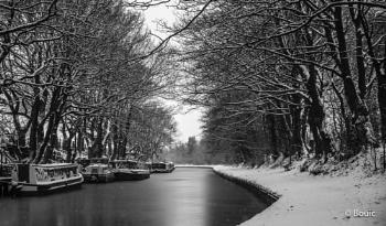 Morning Snow on the canal