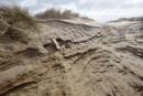 Sand sculpture by raywalker