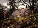 Bit o' Borrowdale....... by Niknut