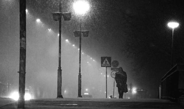 Winter Scene XXXIX by MileJanjic