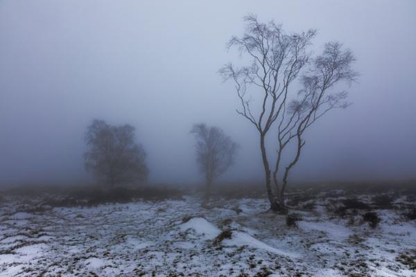 Stanton Moor by Legend147