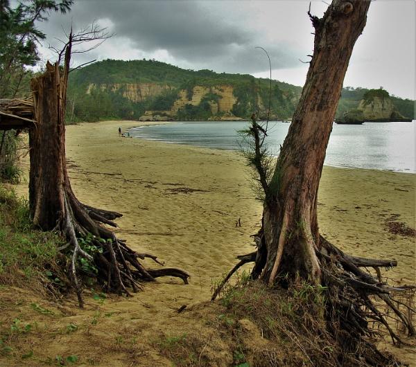 JAPAN - Coastal Landscapes No.47 by PentaxBro